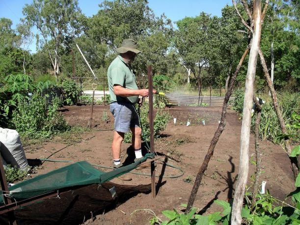 Resize of 04-17-2005 02 Watering The Vegies.JPG