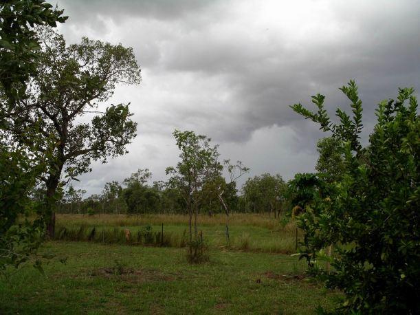 Resize of 04-22-2005 02 Storm Owens.JPG