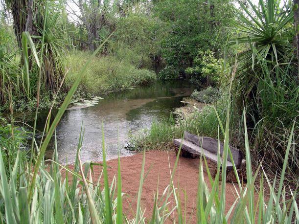 Resize of 04-23-2005 13 Water Monitor Beach 1.JPG