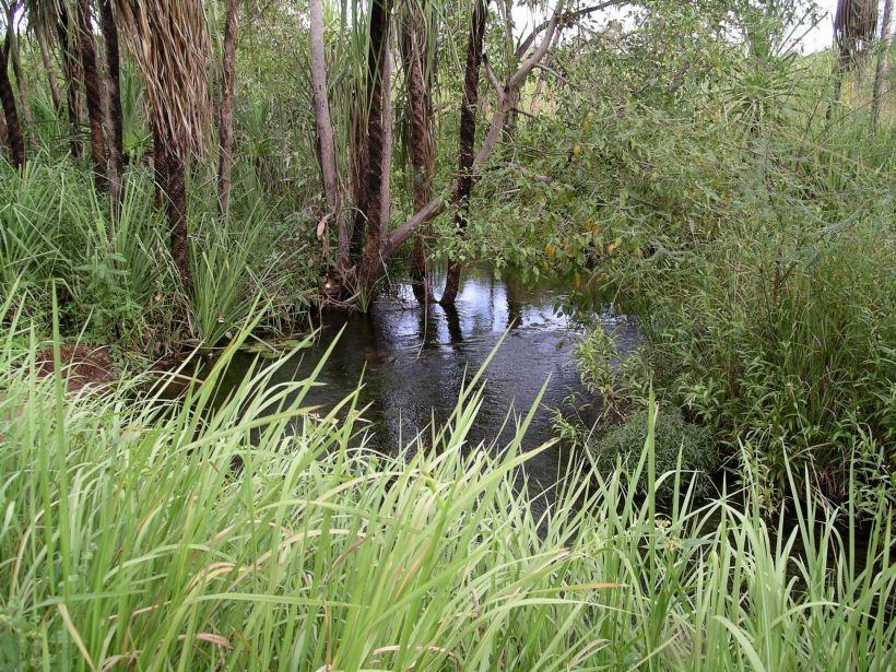 Resize of 04-23-2005 14 Camp Creek 2.JPG