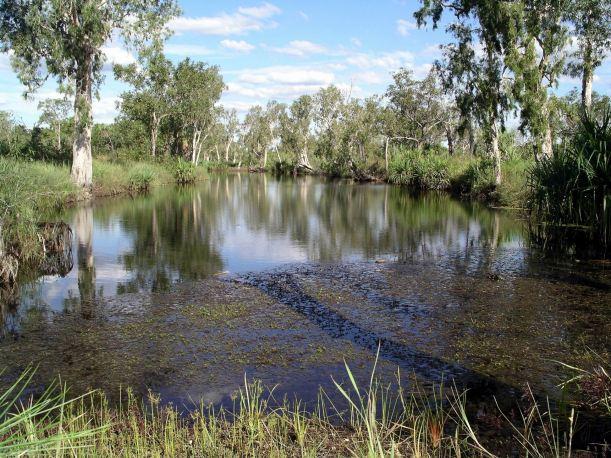 Resize of 05-08-2005 04 Mystery Shovel Lagoon.JPG