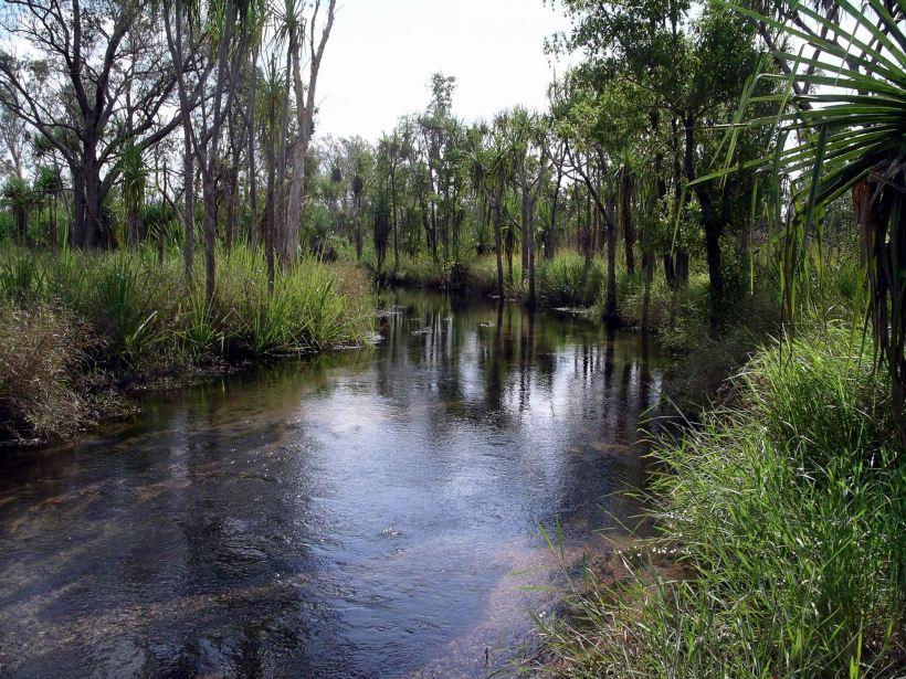 Resize of 06-18-2005 07 Camp Creek Walk 1.JPG