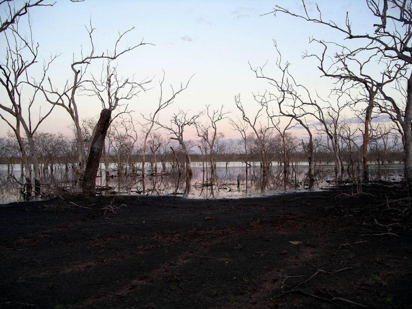 Resize of 06-03-2005 04 Wet Lands June