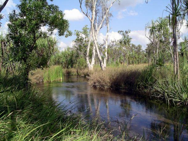 Resize of 06-18-2005 13 Camp Creek Walk 7.JPG