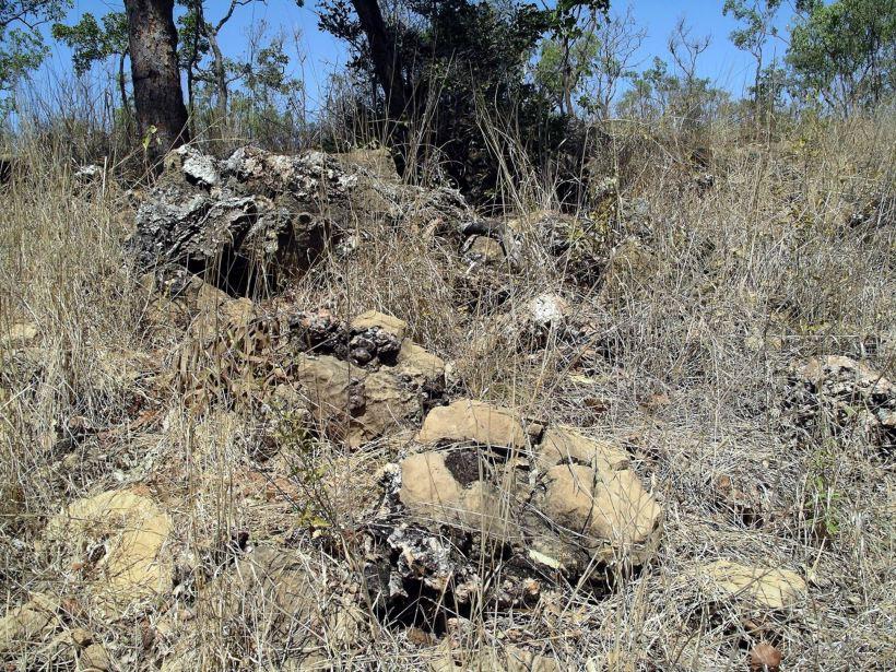 Resize of 08-08-2005 06 Stromatolites.JPG