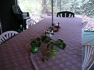 vlcsnap-2015-04-17-20h57m14s189.png