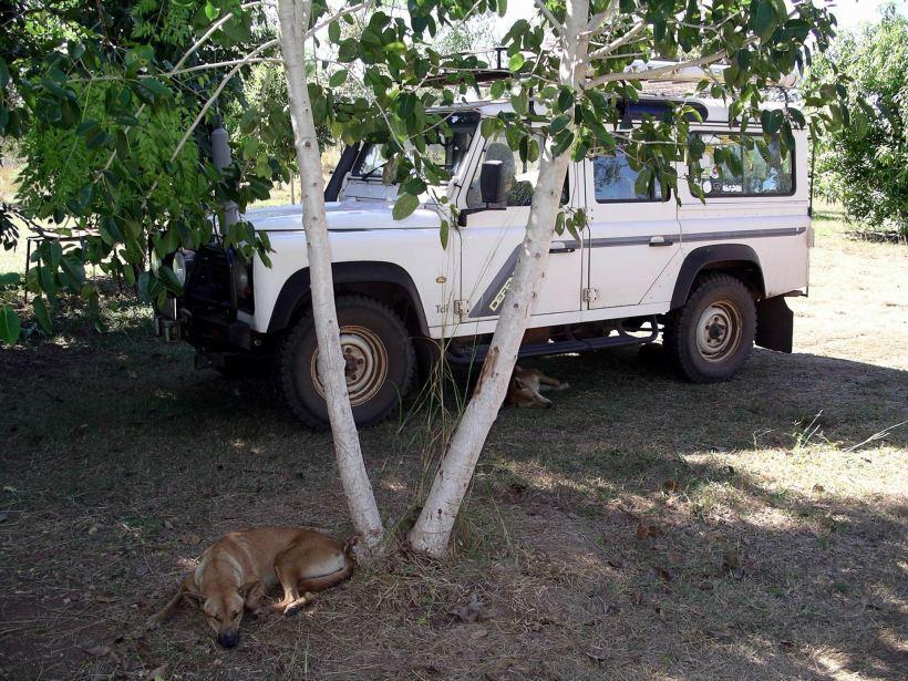 Resize of 05-27-2005 04 Pungalina 6 035.JPG