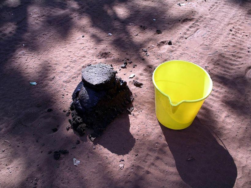 Resize of 08-17-2005 02 Buffalo Shit Size Comparison