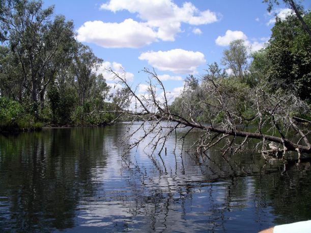 Resize of 08-30-2005 40 Croc Hole 19