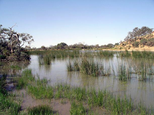 Resize of 09-20-2005 11 Mugerannie RH wetlands