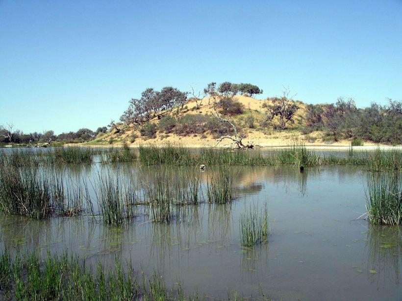 Resize of 09-20-2005 12 Mugerannie RH wetlands