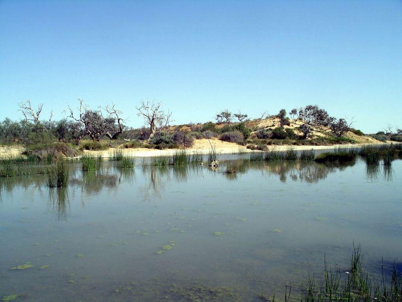 Resize of 09-20-2005 13 Mugerannie RH wetlands