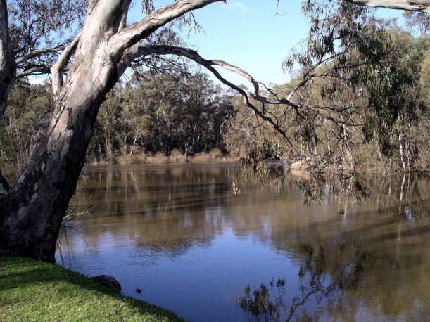 Resize of 04-03-2006 Murray River view downstream