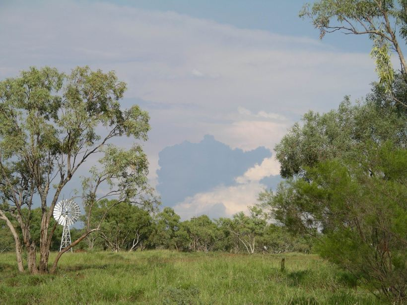 Resize of 04-13-2006 09 Mt Isa in wet9