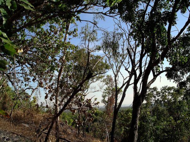 Resize of 06-14-2006 73 Wangi track June
