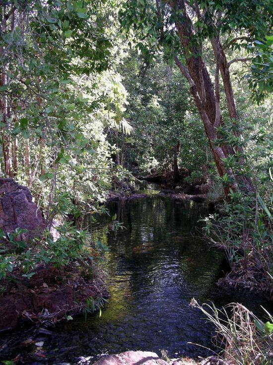 Resize of 07-18-2006 71 Walker Creek 8