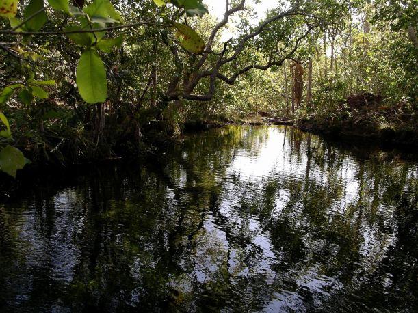 Resize of 07-18-2006 75 Walker creek 12