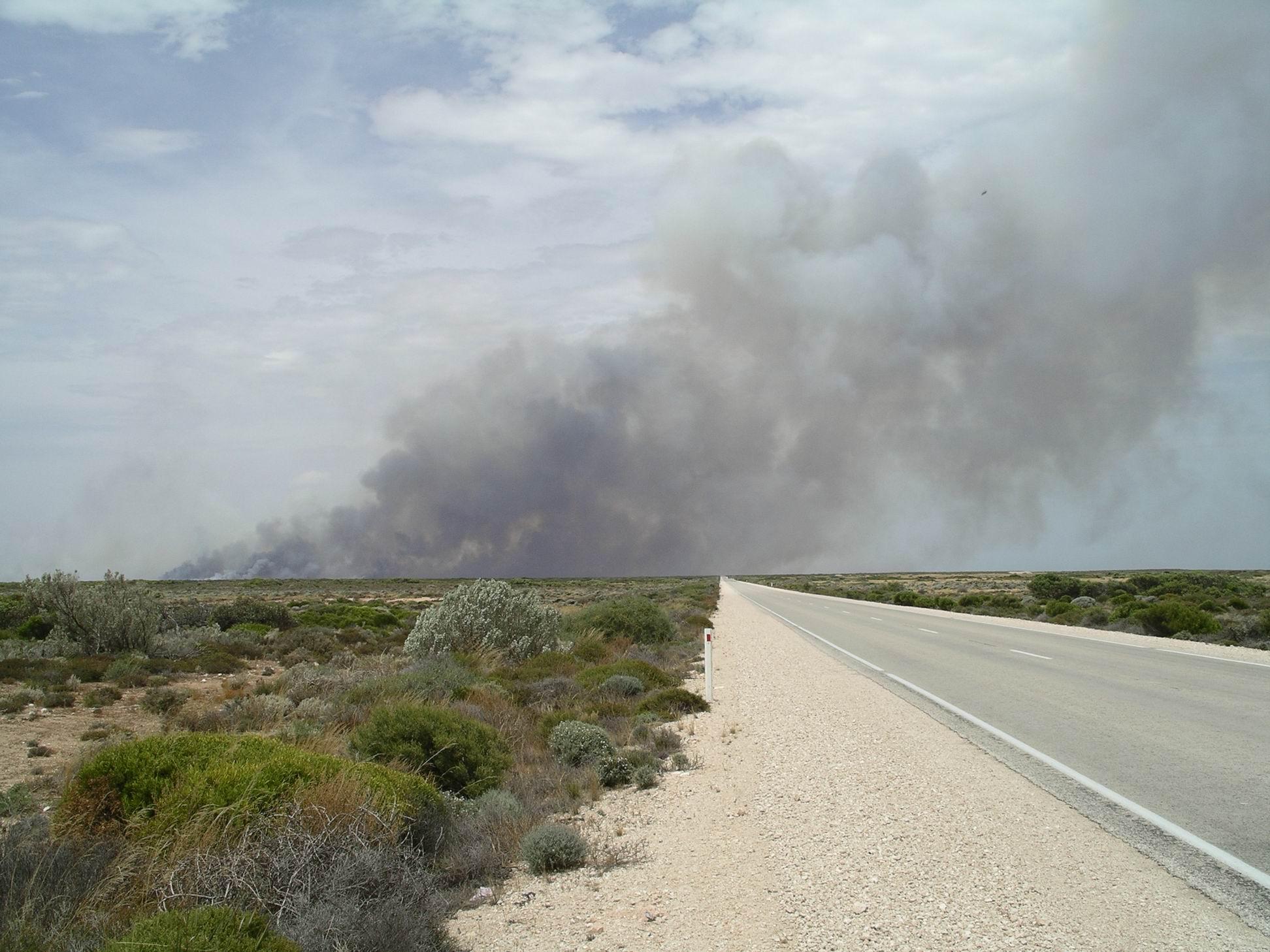 Resize of 12-08-2006 nullarbor bushfire 10