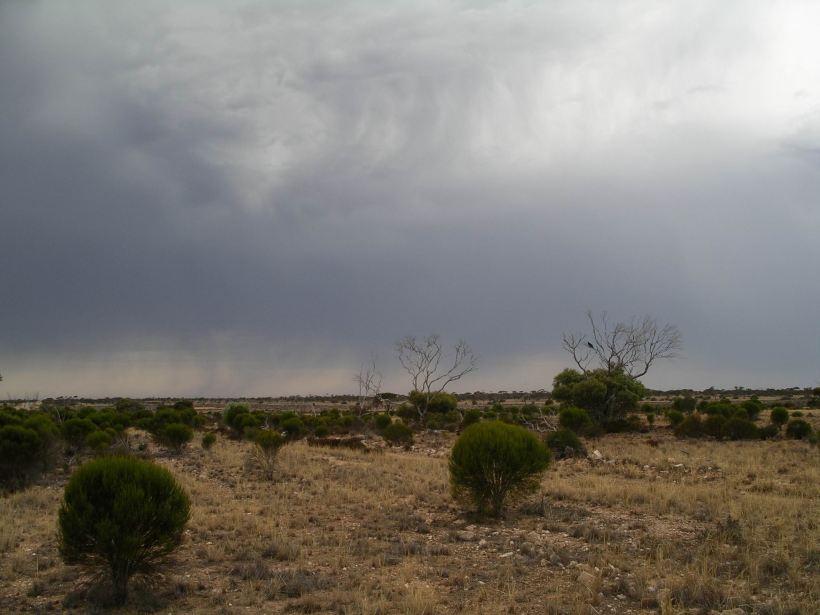 Resize of 12-08-2006 nullarbor bushfire 8